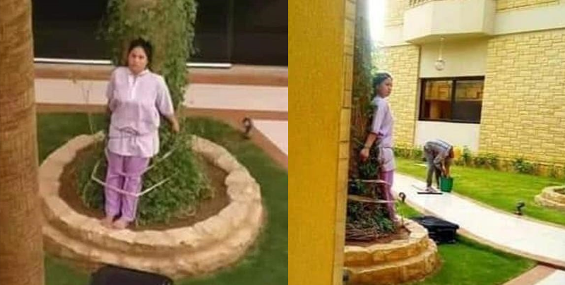 Empleada doméstica fue atada a un árbol para castigarla