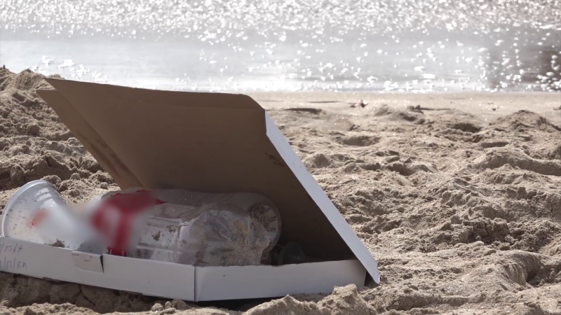 Invitan a limpiar la Playa de Mazatlán