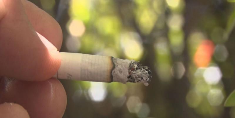 Actividades por el día mundial sin tabaco