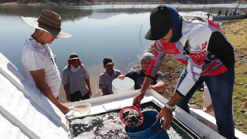 Pescadores de Presa Vinoramas beneficiados con siembra de Alevines