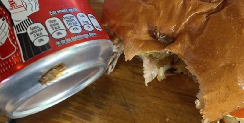 Controversia en redes al hallar cucarachas en comida y bebida en famoso restaurante de Culiacán