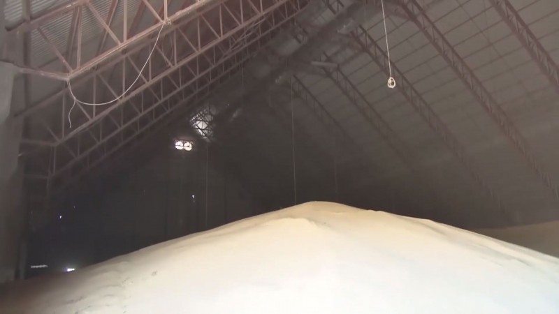 Hay intención de los compradores para contratar mas de un millón 300 mil toneladas de maíz