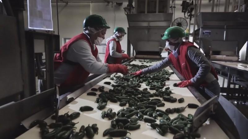 Imposición de arancel estancará la economía de México