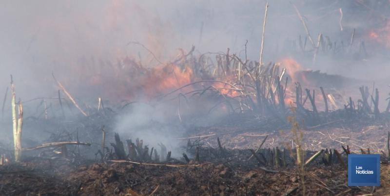 Exhorte Ecología a productores evitar quema de gavilla