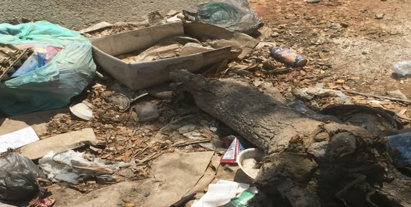 Piden que arreglen y limpien arroyo en Barrancos III