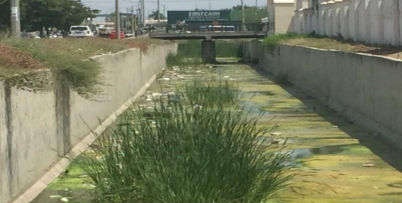 Con mucha agua verde el arroyo que pasa por la Benjamín Hill en Santa Clara