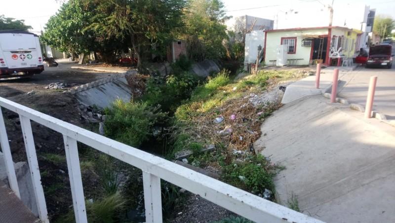 Muy sucios los arroyos de la colonia Guadalupe Victoria