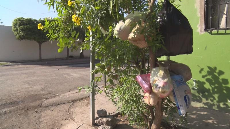 Sin pasar el carro recolector de basura en Prados del Sur