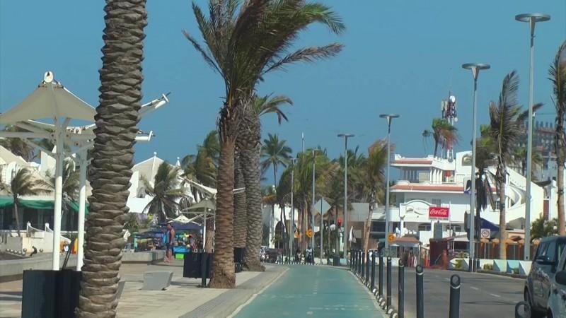 Se extravía contrato de instalación de palmeras en Mazatlán