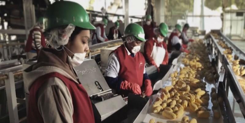 Sinaloa sigue apoyando a emprendedores