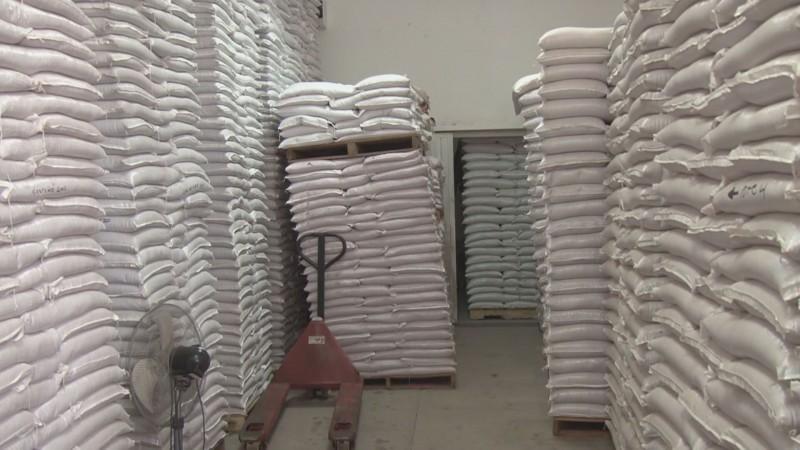 Piden organizaciones mas recursos federales para la compra de semilla para temporaleros