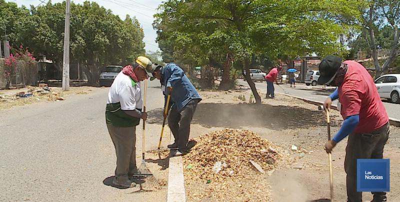 Limpian camellones en calles de la colonia Benito Juárez