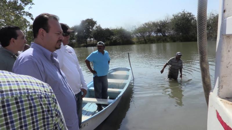 CONAPESCA va por el rescate de sistemas lagunares productores de camarón de México
