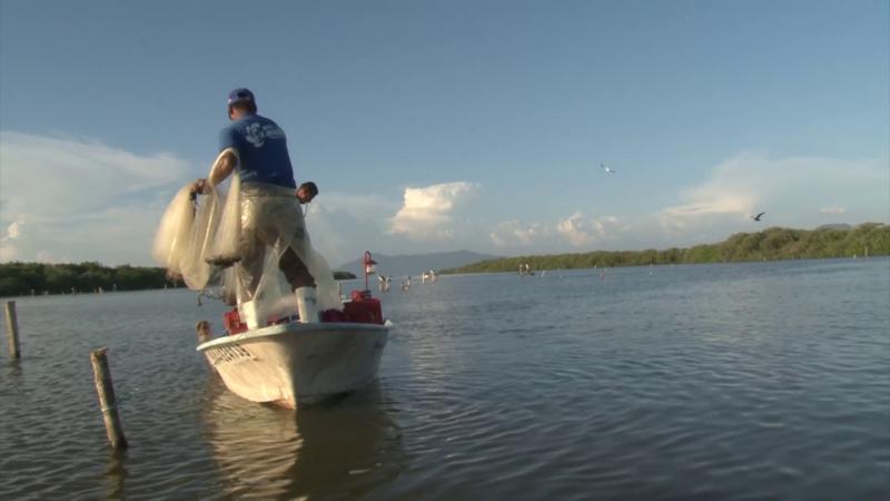 Necesarios castigos más severos a la pesca furtiva: CONAPESCA