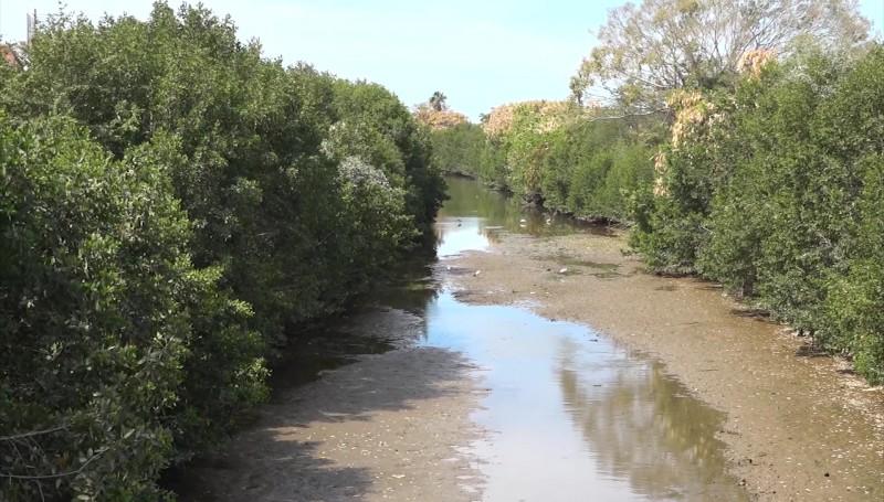 Al 85% limpieza de Arroyos y Canales en la ciudad: Protección Civil