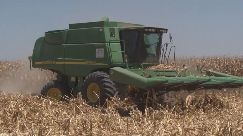 Denuncian la desaparición de centros de insumos y de producción de semillas mejoradas