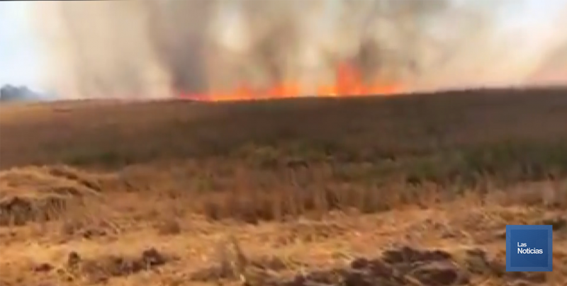 Inician sanciones en Cajeme por quema de gavilla