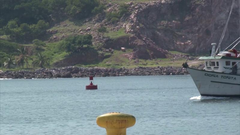 Necesaria más vigilancia pesquera en Sinaloa: Sergio Torres