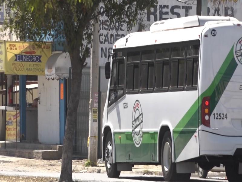 Más camiones urbanos modernizados para Mazatlán: Alianza