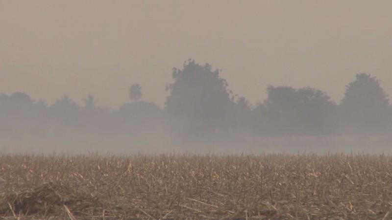 Bomberos y Protección Civil no cuentan con infraestructura suficiente para combatir la quema de socas