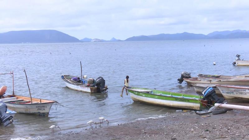Baja producción en pesca