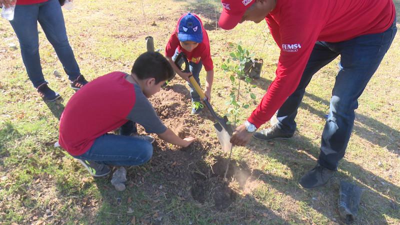 Oxxo reforesta Los Mochis