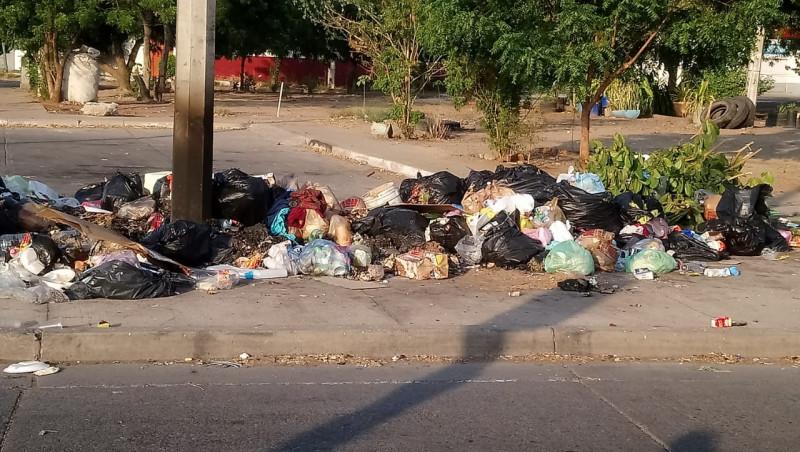 Bastante basura en INFONAVIT Las Flores