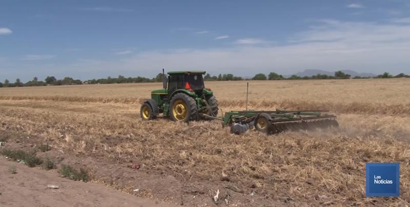 Productores Agrícolas se reunirán con directivos de ASERCA