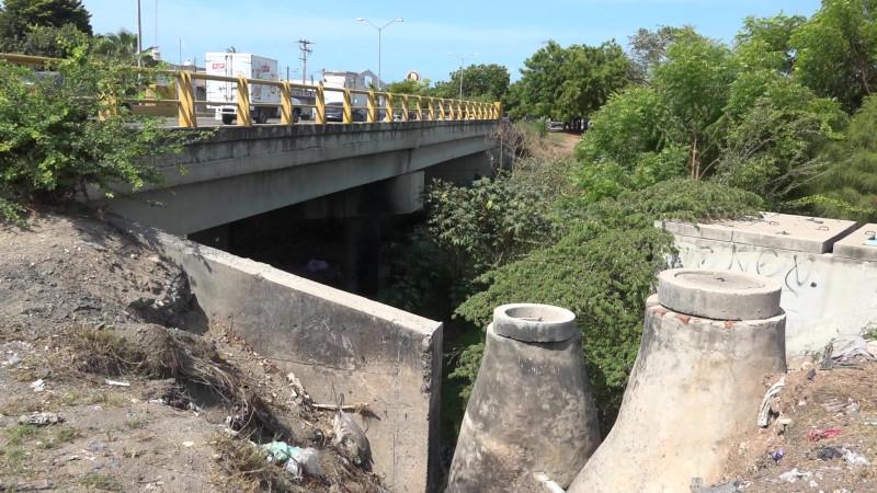 Viven entre 'pestes' en la Salvador Allende de Mazatlán