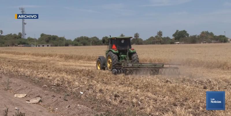 Van por el pago del subsidio a la prima del seguro agrícola