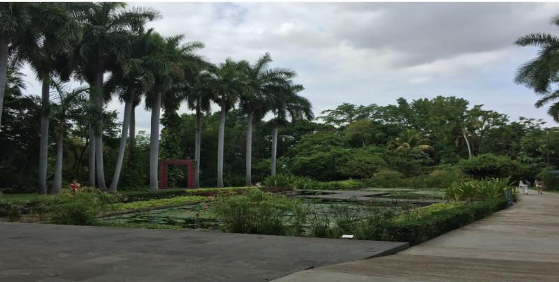 Visite el Jardín Botánico de Culiacán