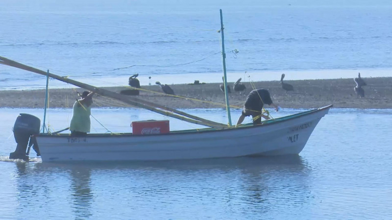 Limita el Gobierno Federal apoyos al sector pesquero del norte del país