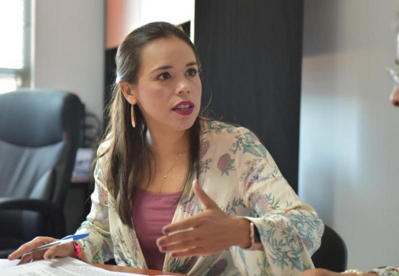 Enfoque equivocado y descalificador de la diputada Flor Emilia: ISMUJERES