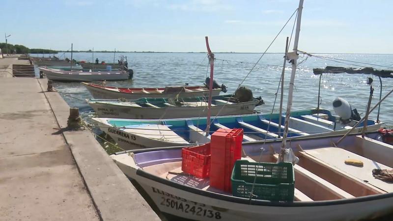 Mala situación de pescadores