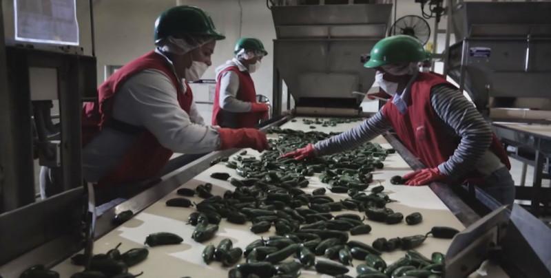 Sinaloa  primer lugar a nivel nacional en crecimiento económico según el ITAEE