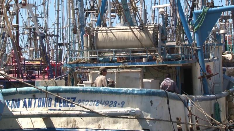 Listos 500 pescadores de Mazatlán para participar en manifestación nacional