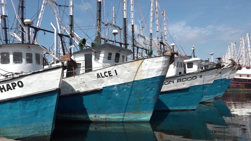 ¡Alerta Roja en el sector pesquero!