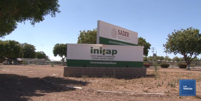 Por no adquirir equipo ya autorizado, investigadores del INIFAP colocan manta