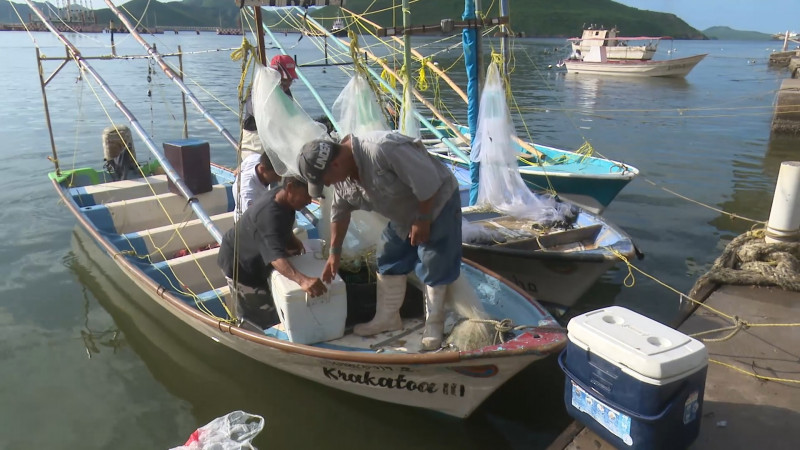 Urgen pescadores, mayor vigilancia en el mar