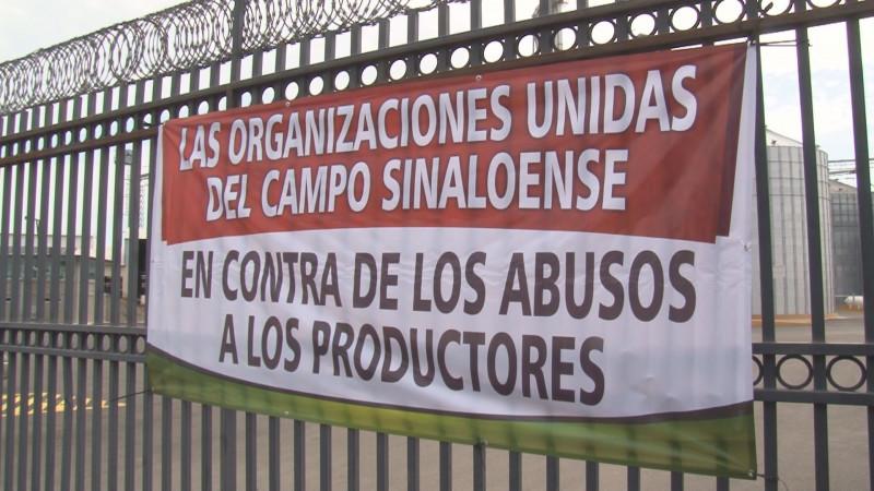 Productores maiceros toman las bodegas de la empresa Granos de Sinaloa