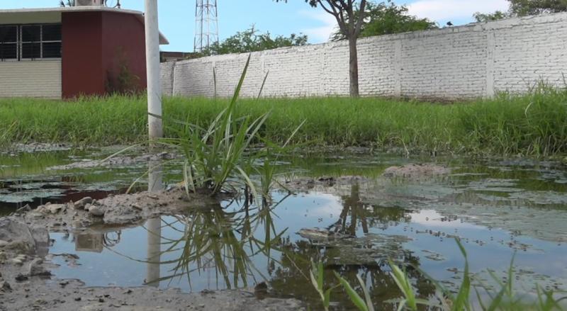 Afecta desborde de aguas negras a escuela primaria Jóse Cayetano Valades