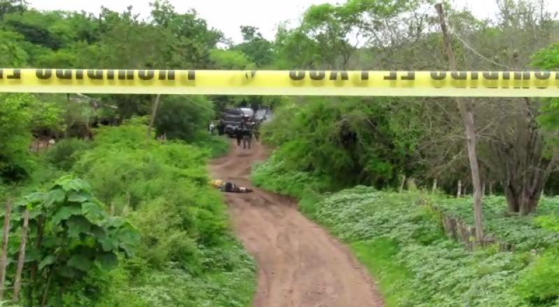 Localizan 5 cuerpos sin vida en zona rural norte de Mazatlán