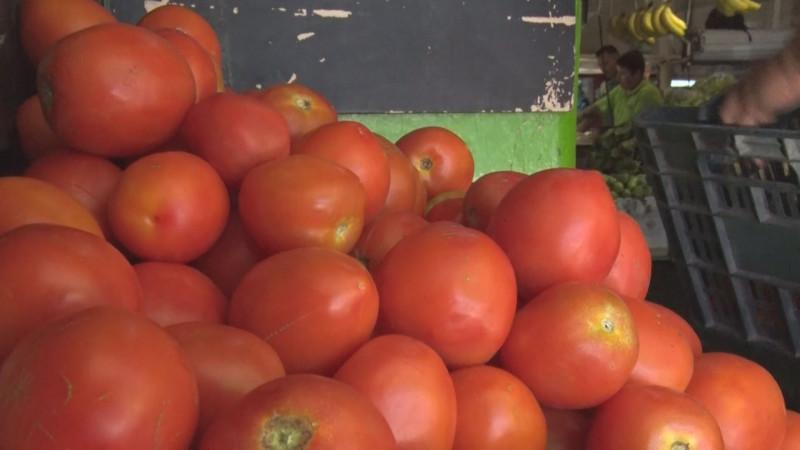 Estiman mayores problemas logísticos con la revisión de los embarques de tomate mexicano