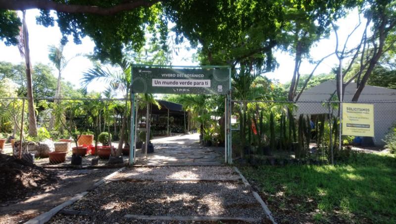 Conoce el vivero del Jardín Botánico