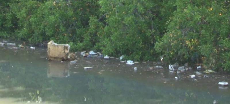 """Es el arroyo Jabalines un """"basurero flotante"""""""