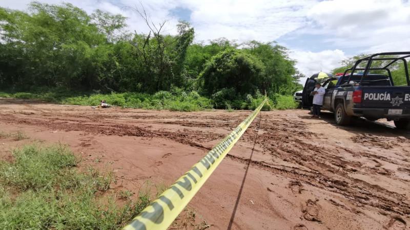 """Una persona asesinada es encontrada en """"La Palmita"""""""