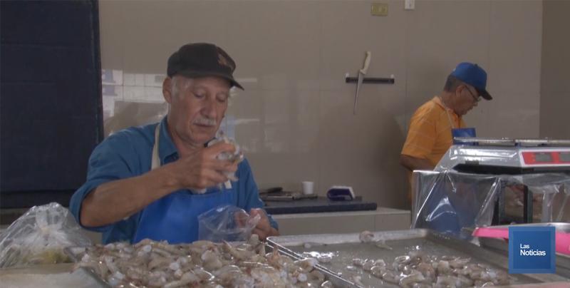 Ya se presenta escasez de pescado en los negocios expendedores