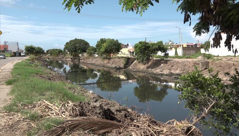 Vecinos de 5 colonias ya no soportan los zancudos, piden fumigación