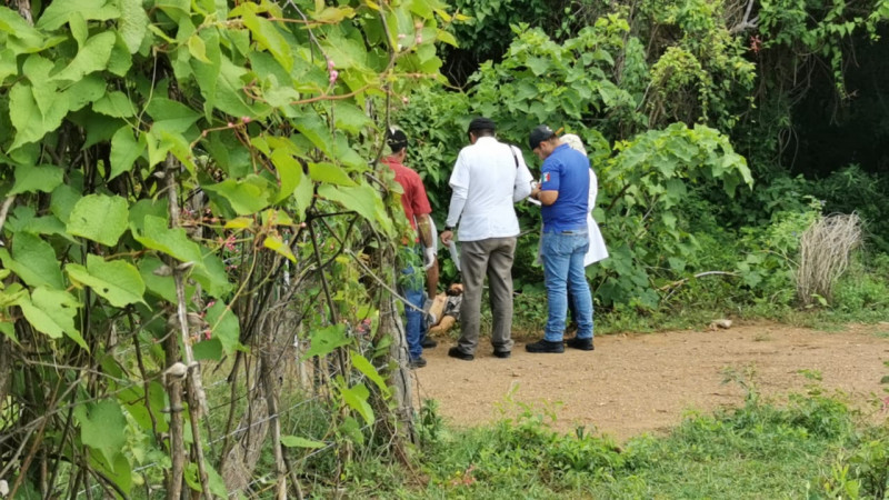En Badiraguato localizan a persona asesinada