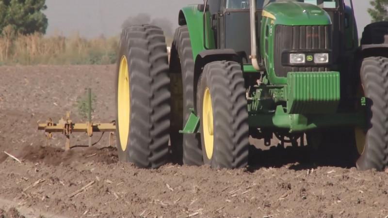 Urge que autoridades y productores analicen costos de producción de los granos